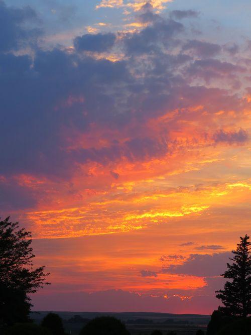 Sunset_Orange between trees fullskyIMG_2894