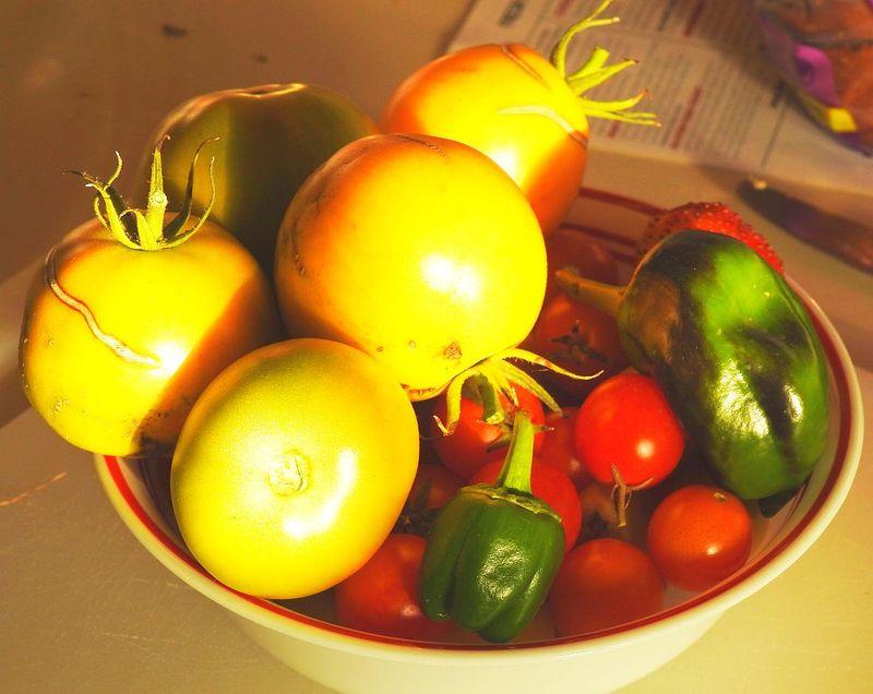 Vegetables_Oct2015_1100x895_Rapid City_DSCN0496
