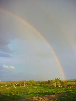 Rainbowb05162005_1